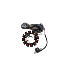 STATOR ALLUMAGE SCOOT ADAPTABLE ORIGINE POUR BOOST